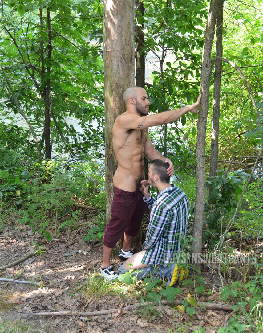 gays in the woods